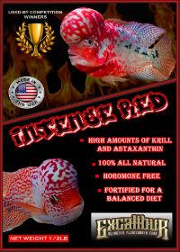 Grand Sumo Red Flowerhorn Fish Food Sale FREE Shipping -- Flowerhorn