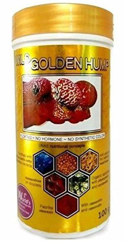 Buy GOLDEN HUMP 100 g