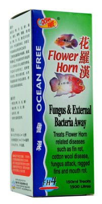 Buy OCEAN FREE Fungus & External Bacteria Away